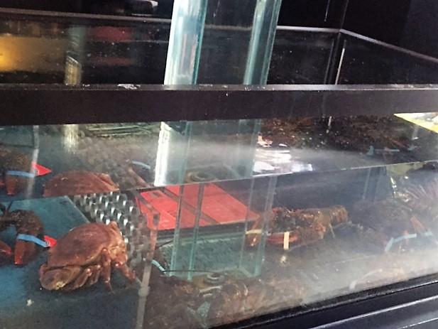 Krab en kreeft
